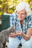 Senior woman and cat 2. Senior woman having fun with a cat in the garden, focus on woman royalty free stock images