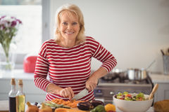 Senior woman chopping vegetables at home. Portrait of senior woman chopping vegetables at home Royalty Free Stock Photography
