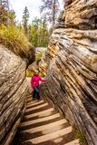 Senior woman climbing the steep stairway that goes from the top of the Athabasca Falls to the canyo Stock Image