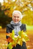 Senior woman collecting maple royalty free stock photo