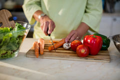 Senior woman cutting vegetables for salad Stock Images
