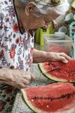 Senior woman cutting watermelon in kitchen Stock Image