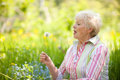 Senior woman with dandelion Stock Photo