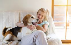 Senior woman and dog Royalty Free Stock Photography
