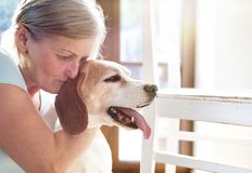 Senior woman and dog royalty free stock image