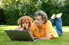 Senior woman with dog at Laptop. Senior woman and dog rest on a meadow and looking to a laptop stock image