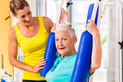 Senior woman doing fitness sport in gym or health club Royalty Free Stock Photo