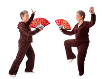 Senior woman doing Tai Chi Yoga exercise Stock Photography