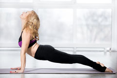 Senior woman doing urdhva mukha svanasana. Fitness, stretching workout, blond attractive smiling mature woman working out in sports club, keeping fit, doing Royalty Free Stock Image