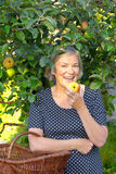 Senior woman eating apple tree. Happy mature woman in a blue polka-dotted dress and a basket on her arm biting in a fresh apple of her apple tree, active and Stock Photo