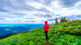 Senior Woman enjoying the View of the Shuswap Highlands. In central British Columbia on a Cold and Windy Day stock photo