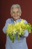 Senior woman with escarole Stock Image