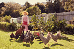 Senior woman farmer with her dog and chickens in backyard Royalty Free Stock Photography
