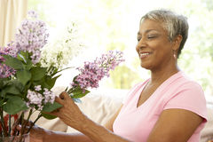 Senior Woman Flower Arranging At Home. Smiling royalty free stock image
