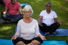 Senior woman with friends meditating at park Royalty Free Stock Photos