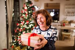 Senior woman in front of Christmas tree holding a gift. Senior woman standing in front of illuminated Christmas tree inside his house holding a present Royalty Free Stock Image
