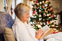 Senior woman in front of Christmas tree. Inside the house, reading Royalty Free Stock Photos