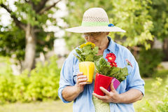 Senior woman in garden Stock Photos