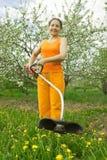 Senior  woman gardener  cut grass Stock Photo