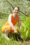 Senior  woman gardener with flowers Stock Photos