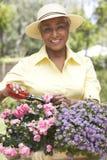 Senior Woman Gardening royalty free stock images