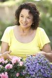 Senior Woman Gardening. Senior Hispanic Woman Gardening Smiling To Camera Stock Image