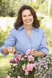 Senior Woman Gardening. Smiling To Camera Stock Photos