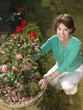 Senior woman gardening Stock Image