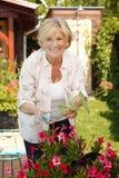 Senior woman gardening Stock Photo