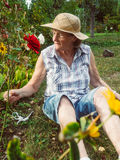 Senior woman is gardening in her garden Royalty Free Stock Image