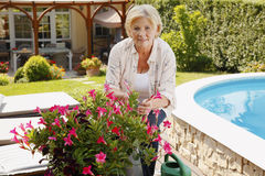 Senior woman gardening. Portrait of senior woman gardening at home. Smiling grandmother cares of plants while standing in her beautiful garden Stock Images