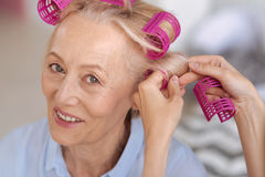 Senior woman getting help with hair rollers. Upbeat mood. Pleasant cheerful senior woman, wearing pink hair rollers, getting some help with a few extras while Stock Images