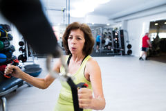 Senior woman in gym working out with weights. Stock Photos