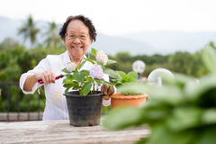Senior woman with happy face Stock Photo