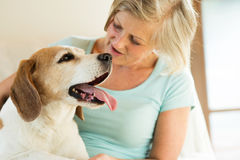 Senior woman with her dog at home relaxing Royalty Free Stock Photos