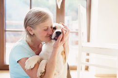 Senior woman with her dog Royalty Free Stock Image