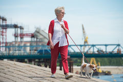 Senior woman and  her dog. Senior woman walking her dog Stock Image