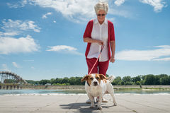 Senior woman and  her dog Stock Images