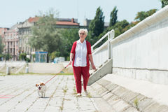 Senior woman and  her dog Royalty Free Stock Photos