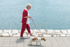 Senior woman and  her dog Stock Photos