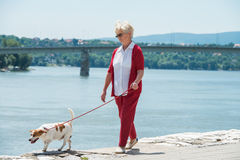 Senior woman and  her dog Royalty Free Stock Photo