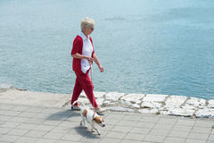 Senior woman and  her dog Royalty Free Stock Images