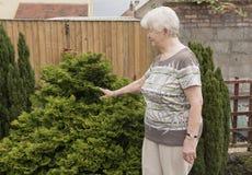 Senior woman in her garden royalty free stock image