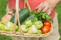 Senior woman holding a basket with vegetables Stock Image
