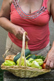 Senior woman holding a basket with vegetables Royalty Free Stock Images