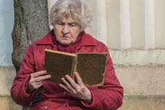 Senior woman holding book in her hands and reading in park royalty free stock photography