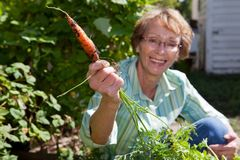 Senior woman holding carrot Stock Images