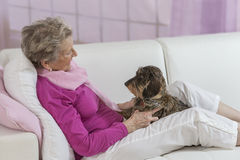 Senior Woman Holding Dog On Sofa stock image