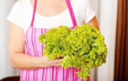 Senior woman holding green salad Royalty Free Stock Photo