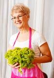 Senior woman holding green salad Stock Photography